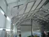 Construction de bâti légère préfabriquée de structure métallique (KXD-SSB2)