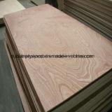 Comercial de 19mm para la construcción de madera contrachapada de Shandong