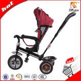 Tianshunの工場からの反紫外線おおいが付いている赤ん坊の三輪車