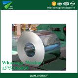 Gi en acier galvanisé plongé chaud principal de bobine de bonne qualité