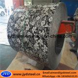 Prepainted bobina de aço galvanizado com design de flores