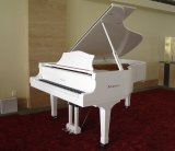 Instrumentos musicais Schumann Piano-piano branco (GP-152) com sistema digital silencioso