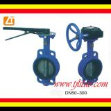 DIN/ANSI 표준 플랜지 기발 나비 벨브