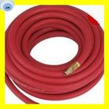 Stahldraht-umsponnener Dampf-Schlauch 2 W/B