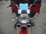 Motocicleta elétrica do triciclo de Trike da roda da carga & do passageiro 3