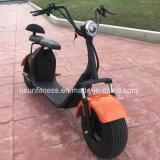 الصين مصنع يزيل درّاجة ناريّة كهربائيّة مع بطّاريّة