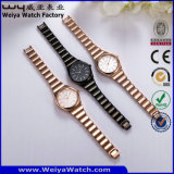 Relógio de pulso ocasional da mulher de quartzo da liga OEM/ODM da fábrica (Wy-104C)