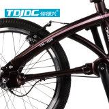 """20 """" Bremsen-faltendes Fahrrad-Fahrrad der gute Qualitätsv für Erwachsene"""