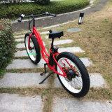 750WのMountianの脂肪質の電気バイクの脂肪質のEバイク