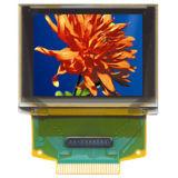 CTPおよび272xrgbx340ピクセルおよび350CD/M2明るさの1.45インチカラーAM OLED表示
