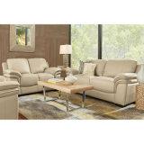 Mobilia stabilita del sofà del salone di disegno moderno (S-05)