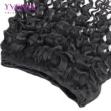 Whoelesale Preis-peruanisches Haar-Italien-Rotation-Haar