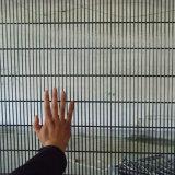 [هيغقوليتي] 358 سجن أمن يلحم [وير مش] سياج