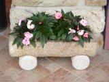 POT di fiore intagliato granito di pietra naturale del giardino per il giardino/scultura di pietra