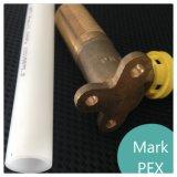 1/2-дюймовый Pex трубы с короткого замыкания в трубопровода высокого качества