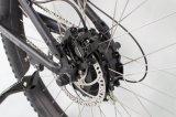 販売(TDB11Z)のためのハイブリッド27.5*3.0 500W山の電気バイク