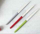 Het moderne Draagbare 18/0 Mes en de Vork van het Fruit van het Handvat van het Roestvrij staal Plastic