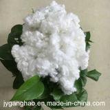 Fibra di graffetta di poliestere vuota nel bianco