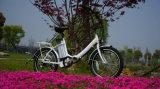 Neumático de 20 pulgadas del motor de 250W bicicleta eléctrica plegable con la norma EN 15194