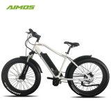 [بس] نظامة [بفنغ] منتصفة غير مستقر محرّك درّاجة كهربائيّة درّاجة ناريّة كهربائيّة