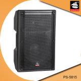 15 Zoll Berufs-PA-Systems-Plastikschrank-passiv-Lautsprecher