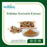 Estratto puro naturale di Terrestris del Tribulus del commercio all'ingrosso 100%