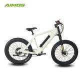 Motor de 350 W 36V 10Ah batería de litio bicicleta eléctrica E Bike