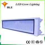 Fabricado en China Crecen de efecto invernadero Hidroponía interiores Tienda LED 170W de luz para crecer la planta médica