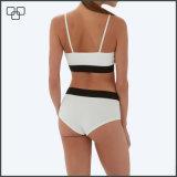 Badebekleidungs-brasilianischer Bikini plus Größen-Badeanzug
