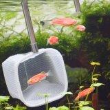 Аквариум продуктов вылова рыбы посадку сеток