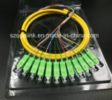 Оптоволоконный оптоволоконный соединитель Patchcord 12 сердечника хвост Sc/ПОСЛЕ ЗАМКА ЗАЖИГАНИЯ G652D