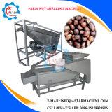 機械を殻から取り出す大きい容量のやしナット