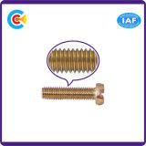 Sujetadores de encargo principales del tornillo del acero de carbono de DIN/ANSI/BS/JIS/del doble V inoxidable para el edificio/el ferrocarril