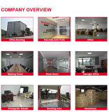 Großhandelspreis-Auto-Zündung-Ring 099700-0251 für DAIHATSU Sirion