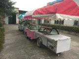 Chariot /Cart de crême glacée de Popsicle pour le Popsicle