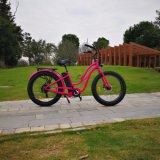 2018 إطار العجلة شعبيّة سمين درّاجة كهربائيّة أكثر