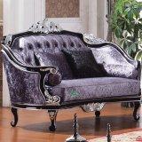 Sofà del salone per mobilia domestica e la mobilia dell'hotel (535)
