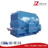 La serie y de tamaño mediano, motor de alto voltaje