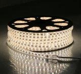 높은 밝은 60LEDs/M 50m/Roll RGB 110V 220V는 세륨 RoHS를 가진 LED 지구를 방수 처리한다