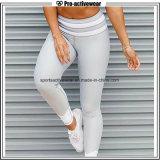 Fábrica OEM Sexy Leggings Leggings mayorista pantalones de yoga Fabric