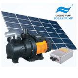 El Ce ISO9001 anima 3 años de la garantía de agua de la bomba de la C.C. de bomba sin cepillo solar de la piscina