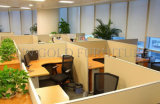 Bürozubehör-hölzerne Partition-modularer Schreibtisch (SZ-WS167)