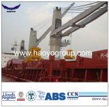 BV navire certifié utilisez 25t corde unique Télécommande Capturez