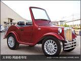6 veicoli elettrici facenti un giro turistico classici del carrello di alta qualità stabile delle sedi