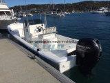 Liyaのガラス繊維のボートはコンソールが付いている25FTのパンガ刀のボートの皮をむく