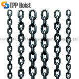 Нержавеющая сталь G50 304/316 цепей соединения с Высокое качество-Диаметром 32
