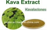 Polvere naturale dell'estratto di Kavalactones 30%~70% Kava Kave