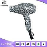 Ronggui 특허 아름다움 온천장 사용을%s 이오니아 헤어드라이어 Rg8019