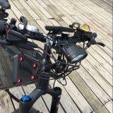 2018 Nueva velocidad gran potencia de los neumáticos de la grasa bicicleta eléctrica/nieve E-bici/Fat Ebike