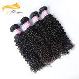 Pelo brasileño sin procesar de la alta calidad de los productos de pelo rizado